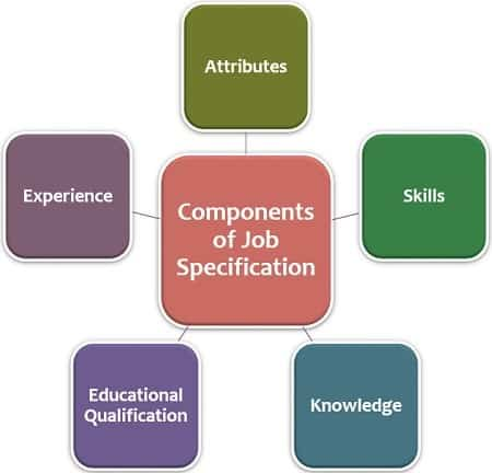 Differences between job description and job specification